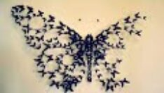 Dekorasyonumuza Kelebekler Katalım