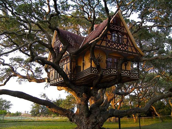 ağaç_ev (3)
